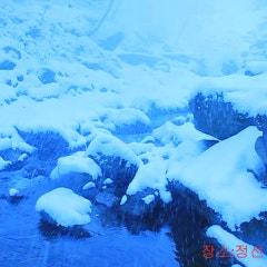 눈 내리는 풍경과 숲속 계곡의 물소리 - 정선 도원펜션