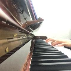 피아노 리브레 레슨 : 캐논 스텝초보 악보 단계?