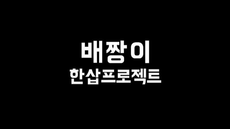 배민팬클럽 배짱이 '한삽 프로젝트'