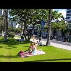 <$26,900: >힐튼그랜드베케이션-HGVC-그랜드와이키키안-Grand Waikikian, 리세일(Seller-Buyer) 추천 Listing
